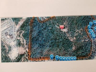 Placerville Residential Lots & Land For Sale: 260 Wiltse Road