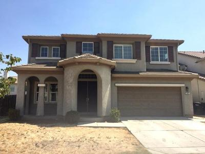 Patterson Single Family Home For Sale: 450 Placer Creek Drive