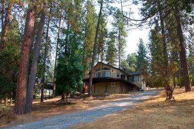 Groveland Single Family Home For Sale: 19369 Ferretti Road