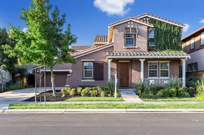 Mountain House Single Family Home For Sale: 730 West Woodside Avenue