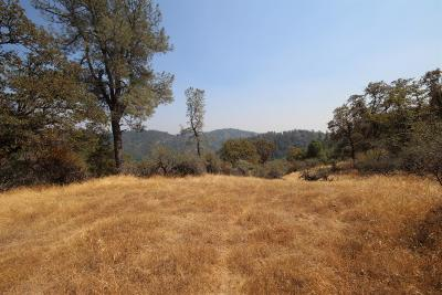 Grass Valley Residential Lots & Land For Sale: 16500 Annie Drive