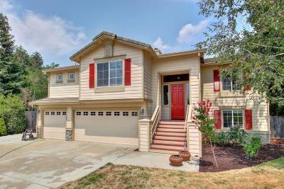 El Dorado Hills Single Family Home For Sale: 1023 Jasmine Circle
