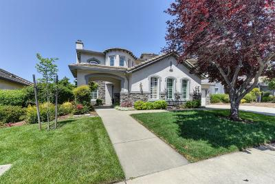 El Dorado Hills Single Family Home For Sale: 4668 Village Green Drive