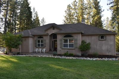 Foresthill Single Family Home For Sale: 22018 Farrier Court