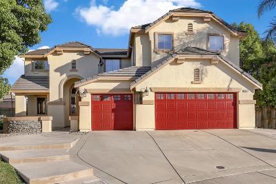Elk Grove Single Family Home For Sale: 9879 Donatello Court