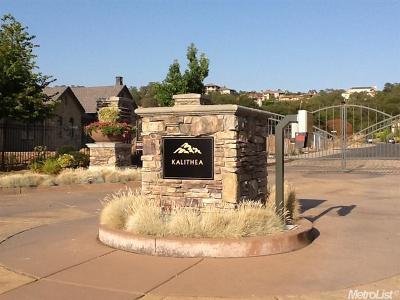 El Dorado Hills Residential Lots & Land For Sale: 2801 Capetanios Drive
