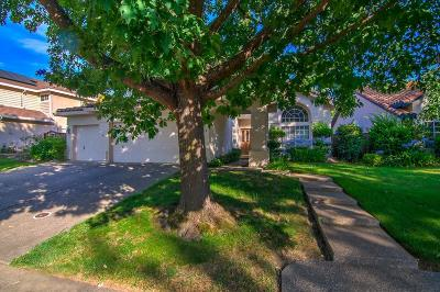 Folsom Single Family Home For Sale: 184 Orange Blossom Circle