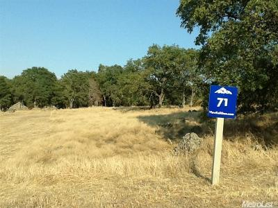 El Dorado Hills Residential Lots & Land For Sale: 2923 Capetanios Drive