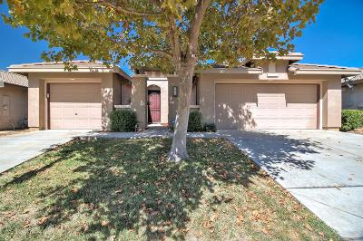 Elk Grove Single Family Home For Sale: 10013 Mosaic Way