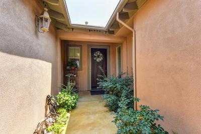 El Dorado Hills Single Family Home For Sale: 331 Nebbiolo Court