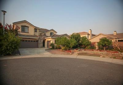 Elk Grove Single Family Home For Sale: 6600 Canner Court