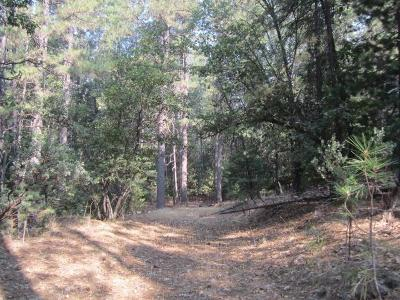 Placerville Residential Lots & Land For Sale: 3792 Stope Drive