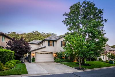 Rocklin Single Family Home For Sale: 3527 Pleasant Creek Drive