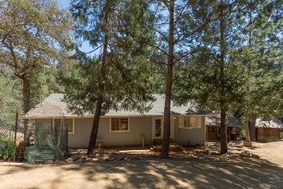 Garden Valley Single Family Home For Sale: 6966 Tamalpais Road