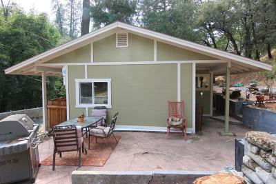 Placer County Single Family Home For Sale: 1270 Dog Bar Road