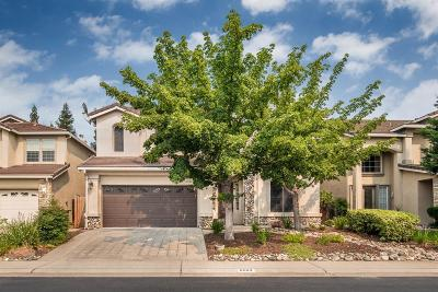 Rocklin Single Family Home For Sale: 6504 Kingbird Court