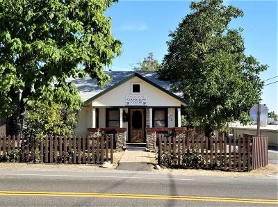 Diamond Springs Single Family Home For Sale: 504 Pleasant Valley Road