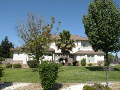 Sacramento Single Family Home For Sale: 8038 Prairie Field Drive