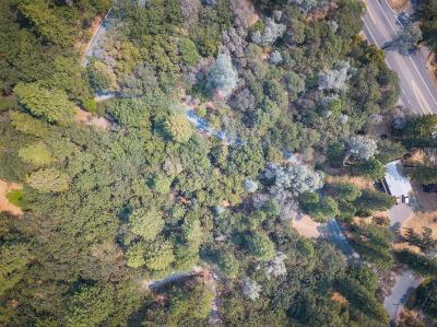 Meadow Vista Residential Lots & Land For Sale: Pinewood Way