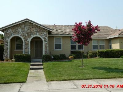 Sacramento Single Family Home For Sale: 2371 Cotterdale Alley