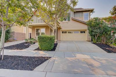 Mountain House Single Family Home For Sale: 439 West Las Brisas Drive