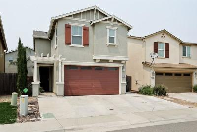 Sacramento Single Family Home For Sale: 8264 Red Rock Drive