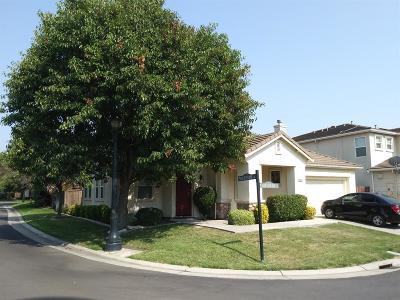 Stockton Single Family Home For Sale: 3845 Condor Court