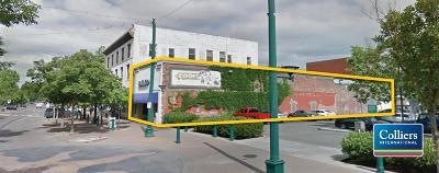 Lodi Commercial For Sale: 23 Elm Street