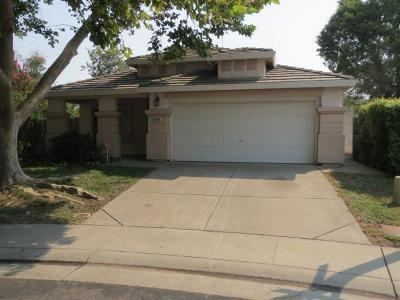 Roseville Single Family Home For Sale: 1444 Zinnia Way