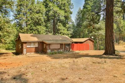 Pollock Pines Single Family Home For Sale: 6065 Pony Express Trail