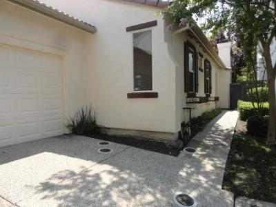 Sacramento Single Family Home For Sale: 510 Natalino Way