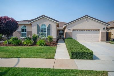Rancho Cordova Single Family Home For Sale: 4246 Borderlands Drive