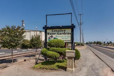Escalon Commercial For Sale: 19777 McHenry Avenue