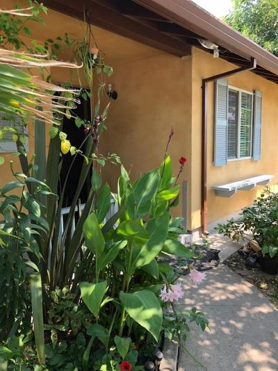 North Highlands Single Family Home For Sale: 7000 Larchmont Drive