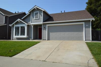 Elk Grove Single Family Home For Sale: 9000 Bramblewood Way