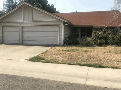 Sacramento Single Family Home For Sale: 9056 Geyser Peak Way