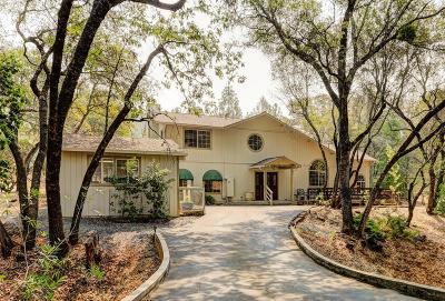 Penn Valley Single Family Home For Sale: 12833 Lake Wildwood Drive