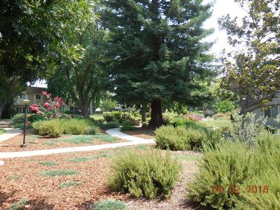 Sacramento Condo For Sale: 8740 Woodman Way