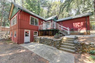Grass Valley Single Family Home For Sale: 14046 Colfax Hwy