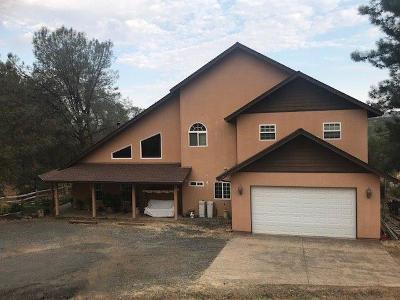 Copperopolis Single Family Home For Sale: 434 Pinon Drive