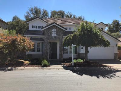 Roseville Single Family Home For Sale: 6121 Lockridge Drive