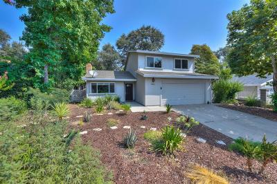 Orangevale Single Family Home For Sale: 8465 N Star Way