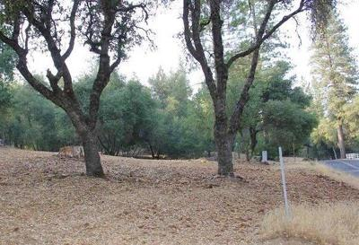 Sonora Residential Lots & Land For Sale: 21930 Lyons Bald Mountain Road