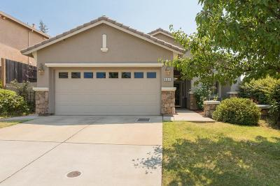 Folsom Single Family Home For Sale: 661 Hillswick Circle