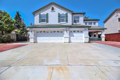 Stockton Single Family Home For Sale: 5137 Shipwheel Drive