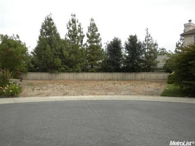 Sacramento Residential Lots & Land For Sale: 12 Stonefield Court