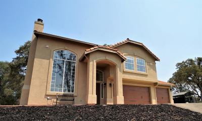 Mokelumne Hill Single Family Home For Sale: 3748 Gold Pan Court