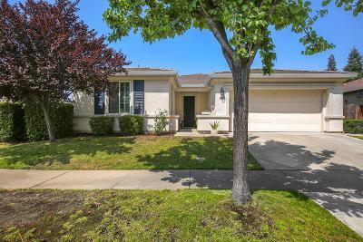 Roseville Single Family Home For Sale: 7601 Rosehall Drive