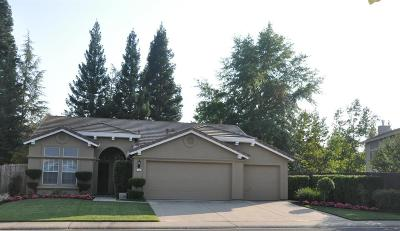 Folsom Single Family Home For Sale: 156 Briggs Ranch Drive