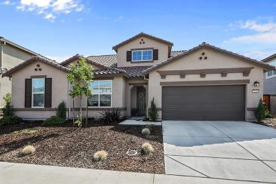 Roseville Single Family Home For Sale: 7185 Castle Rock Way